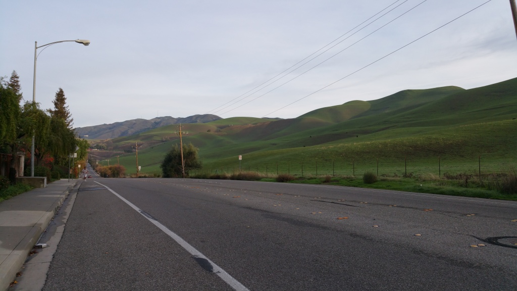 on Piedmont Rd., facing north, in Milpitas [a SJ 'burb]. The hills quickly turned green here after a deluge of rain in the past week. SO. PRETTY.