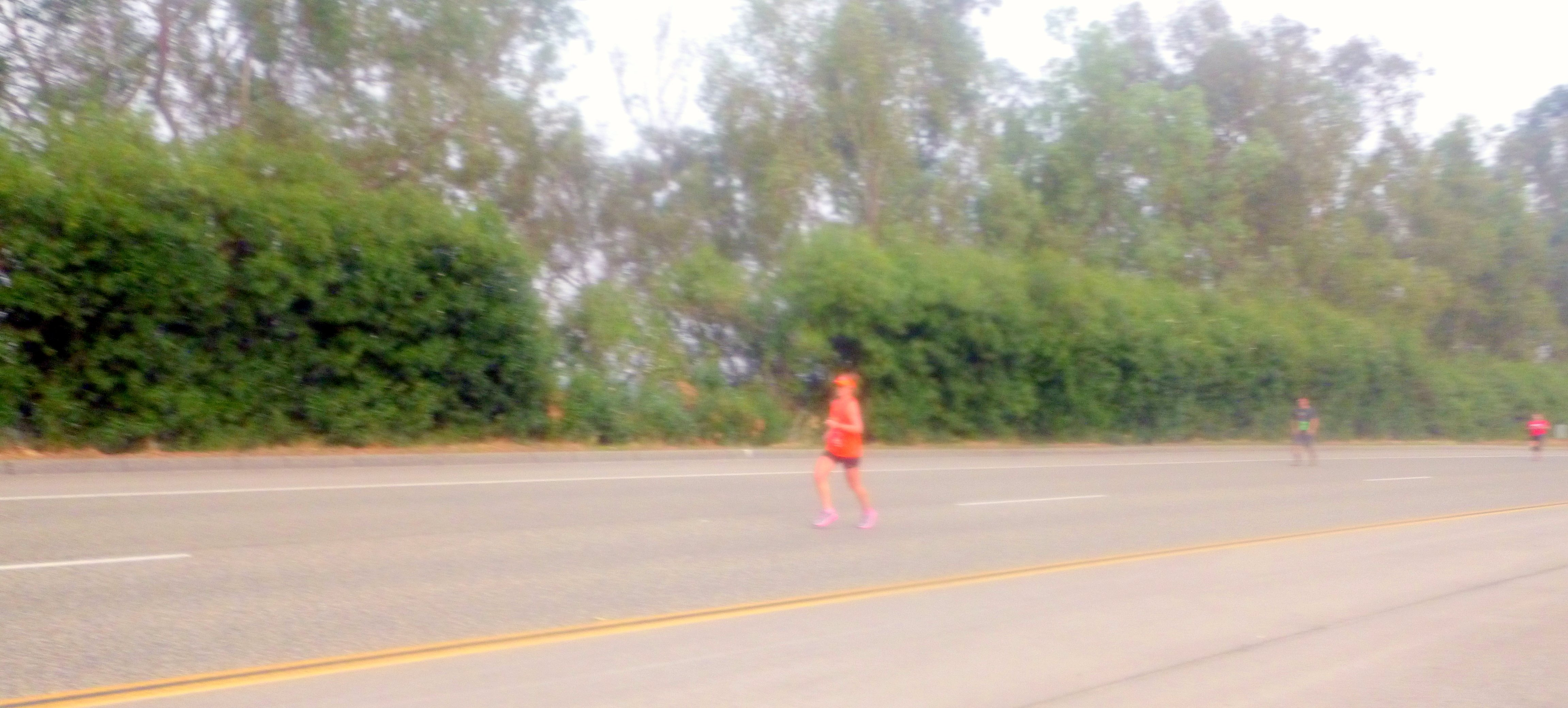 "Climbing the only ""hill"" at TCM at mile 21 and on my own at that point. PC: Linh"